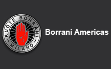 Borrani wire wheels